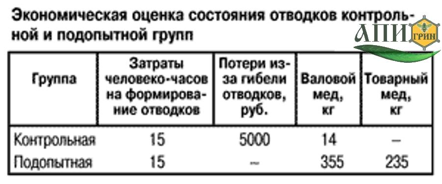 Таблица. Экономическая оценка состояния отводков контрольной и подопытной групп