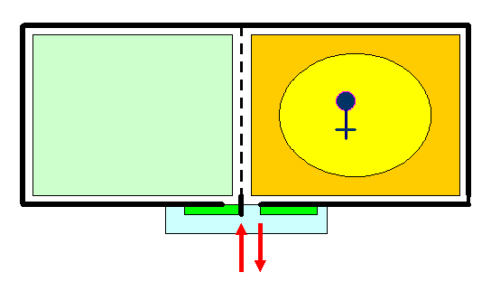 Рисунок 2 – Пчелиная семья до разделения, находящаяся в одном из отделов  модернизированного лежака (вид сверху)