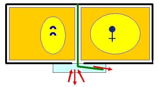 Рисунок 3 - Перегруппировка семьи, при формировании отводка   (вид сверху)