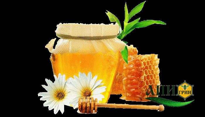 мед цветочный лечебные свойства