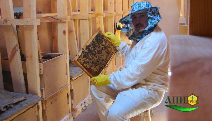 Маточное молочко купить - профессиональный пчеловод Игошин