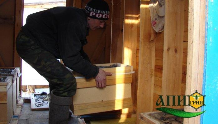 Постановка пчел в павильоны (5 модели) с заменой зимних доньев