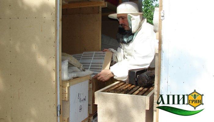 Работа в павильоне для содержания пчел в 3 модели