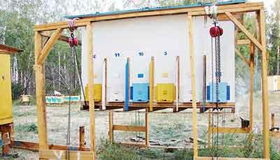 Технология павильонного содержания пчел. Автор Игошин Олег Юрьевич