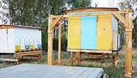Технология павильонного содержания пчел. Автор Игошин Олег Юрьевич. Фото 2