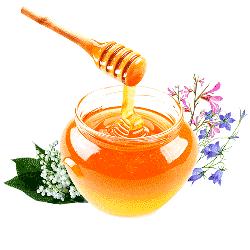 Купить лесной мед в Ульяновске