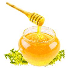 Купить донниковый мед в Тольятти